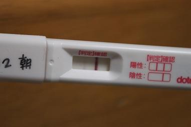 高温 期 7 日 目 フライング